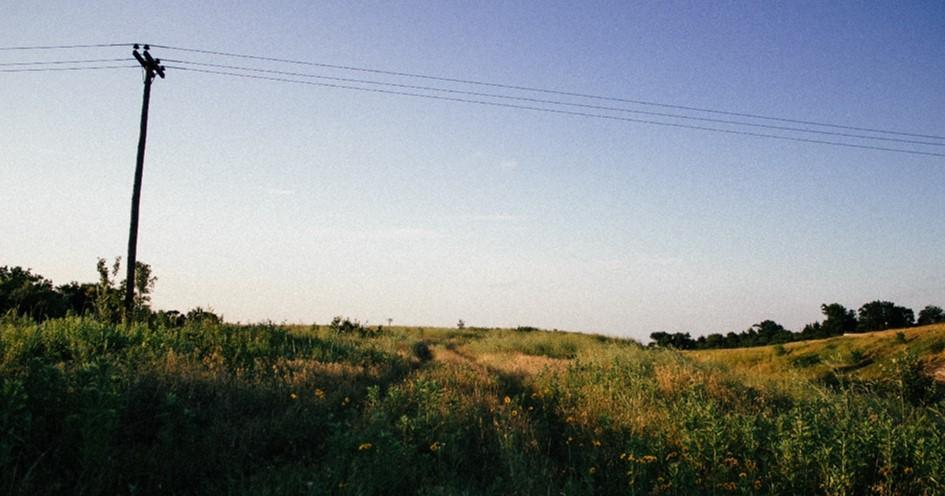 Electrical wires in landscape
